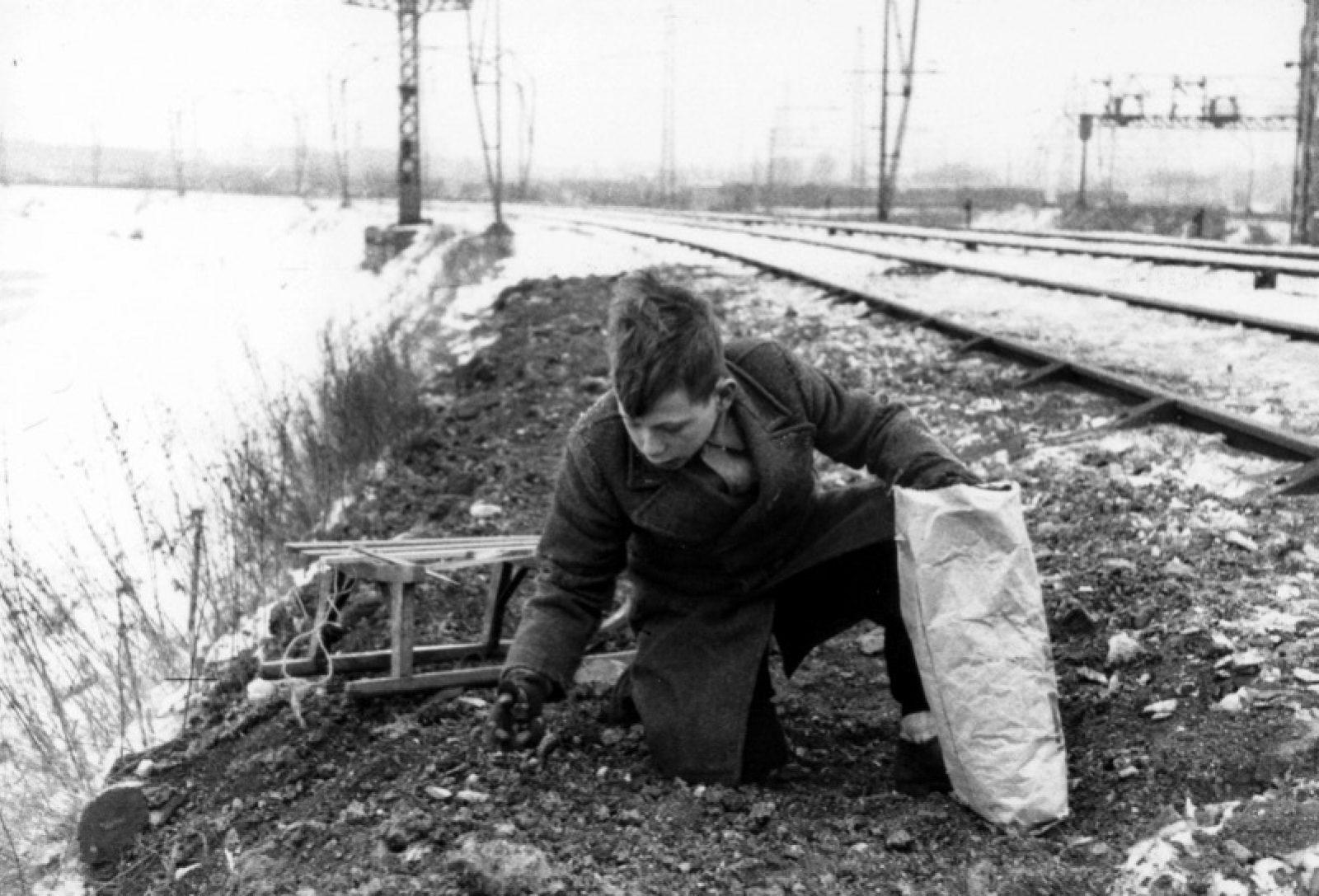 1944 45 kolen de Herder NL Rt SA 4100 2005 5276 01