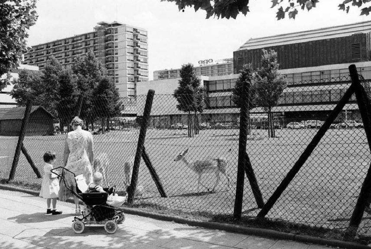 Stadsarchief Lex de Herder Hertenkamp 1972