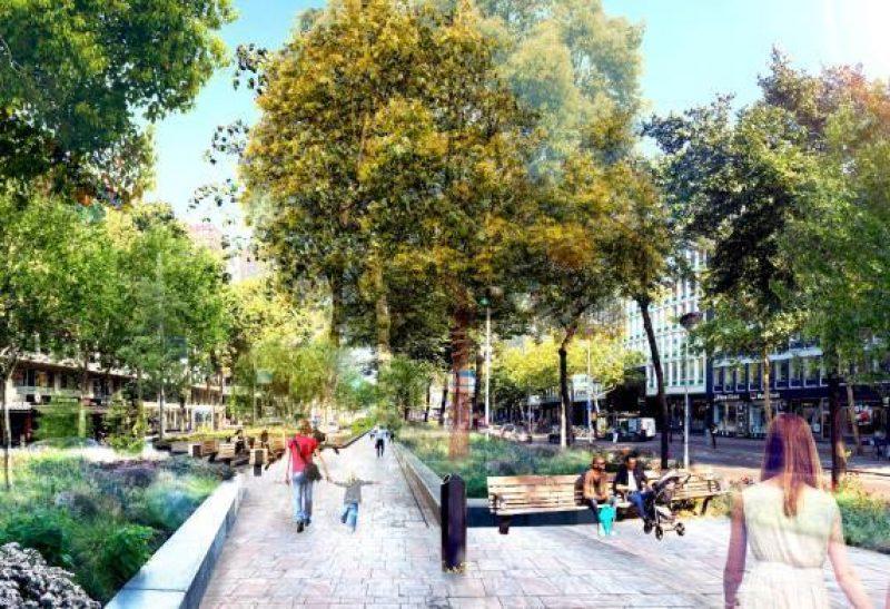Vergroening Rotterdam waaronder Hofplein en Westblaak